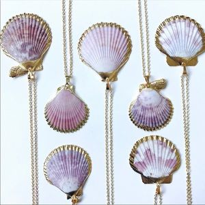 Jewelry - Scallop Shell 24k Gold Dipped Necklace🍍